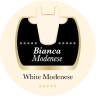 Parmigiano Reggiano di vacca Bianca Modenese 24 mesi