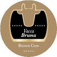 Parmigiano Reggiano Vacca Bruna 24 mesi
