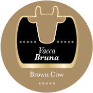 Parmigiano Reggiano Vacca Bruna 36 mesi - Quarto di forma